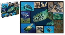 WWF 1000 pieces puzzle - Tortues