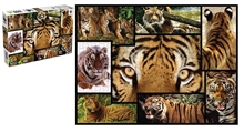 WWF 1000 pieces puzzle - Tigres