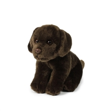 ACP Labrador Marron - 20 cm #