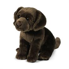ACP Labrador Marron - 26 cm - #