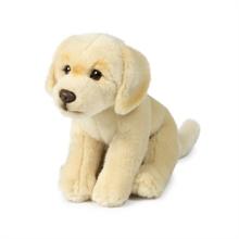 ACP Labrador Crème - 20 cm #