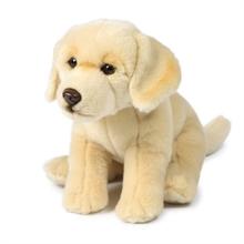 ACP Labrador Crème - 26 cm #
