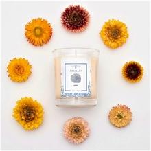 Bougie parfumée - Jardin en hiver - Miel - 45h - 180g