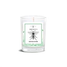 Bougie parfumée - Jardin d'été - Menthe poivrée - 45h - 180g