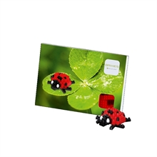 Cartes postales - Coccinelle - Niv. 1 - Polybag