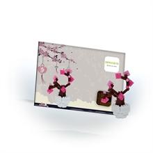Cartes postales - Cerisier - Niv. 1 - Polybag