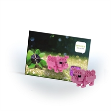 Cartes postales - Petit cochon - Niv. 1 - Polybag