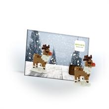 Cartes postales - Rennes - Niv. 1 - Polybag