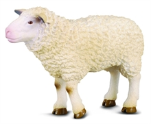 HC3 Ferme - Mouton - M