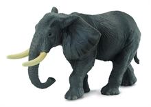 A. sauvages - Eléphant d''Afrique - XL