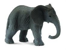 A. sauvages - Eléphanteau d''Afrique - S