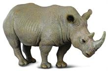 A. sauvages - Rhinocéros blanc - L - #