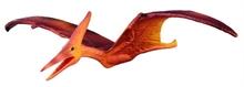 Préhistoire - Pteranodon - M