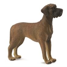 Chats et chiens - Dogue allemand - L