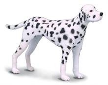 HC3 Chats et chiens - Dalmatien - M #