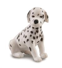 Chats et chiens - Dalmatien chiot - S