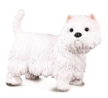 Chats et chiens - West Highland white terrier - M