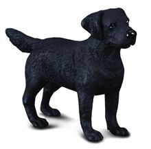 HC3 Chats et chiens - Labrador retriever - M #