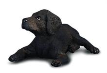 HC3 Chats et chiens - Chiot Labrador retriever - S #