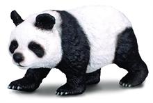 A. sauvages - Panda géant - L