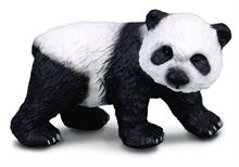 A. sauvages - Bébé panda géant (debout) - S