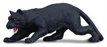 A. sauvages - Panthère noire - M