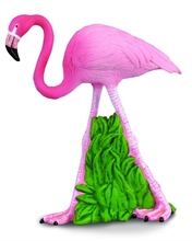 A. sauvages - Flament rose - M