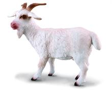 Ferme - Chèvre - M