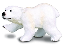 HC4 A. sauvages - Bébé ours blanc debout - S - #