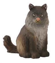 Chats et chiens - Norvégien châton - S