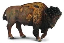 HC4 A. sauvages - Bison dAmérique du Nord - L - #