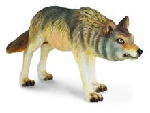 A. des bois - Loup des bois qui chasse - M
