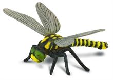 HC3 Insectes - Libellule - L