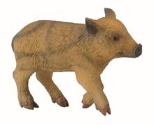 HC3 A. des bois - Porcinet sauvage qui marche - S #