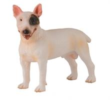 Chats et chiens - Bull Terrier mâle - M