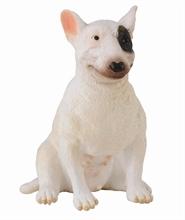 HC3 Chats et chiens - Bull Terrier - Femelle - M