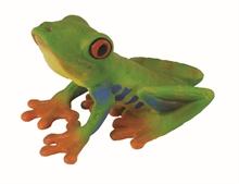HC3 Insectes - Rainette aux yeux rouges (grenouille) - M #