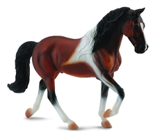 Chevaux - Etalon Tennessee Walking Horse Bay Pinto - XL