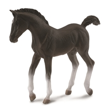 Chevaux - Poulain tennesse walking horse noir - M