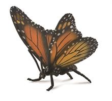HC3 Insectes - Monarque (papillon) - L