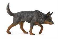 Chats et chiens - Bouvier australien - L