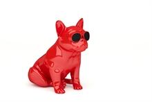 Enceinte AEROBULL XS1 Rouge brillant 120 Watts - 30.5x21x24.5cm
